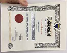 buy fake University of Malaya diploma, fake degree in Johor