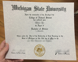 Michigan State University diploma sample, purchase fake degree in Dubai