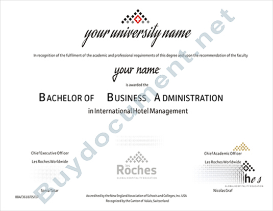 0ther Countries Diploma/Degree