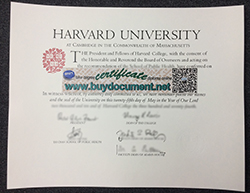 How to Get a Harvard University Diploma?