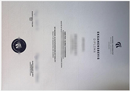 Buy Fake Aalborg University Diploma in Denmark