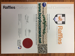 Fake Raffles College of Design and Commerce Diploma Sample