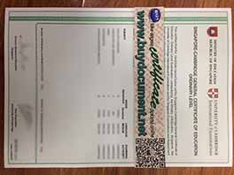 How to buy fake Singapore GCE O Level certificate
