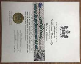 How to Buy Fake Dalhousie University Diploma Certificate